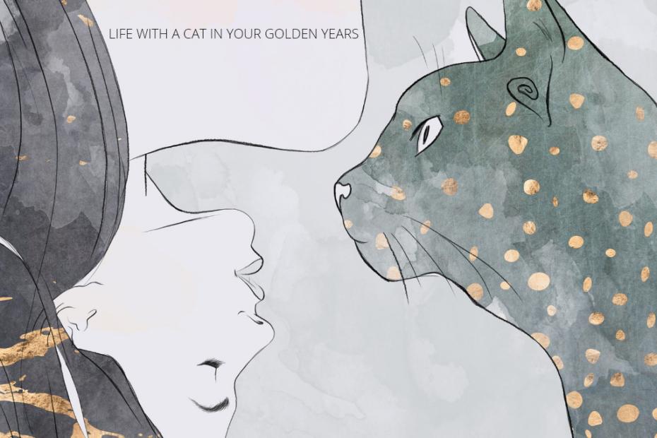cat in your golden years